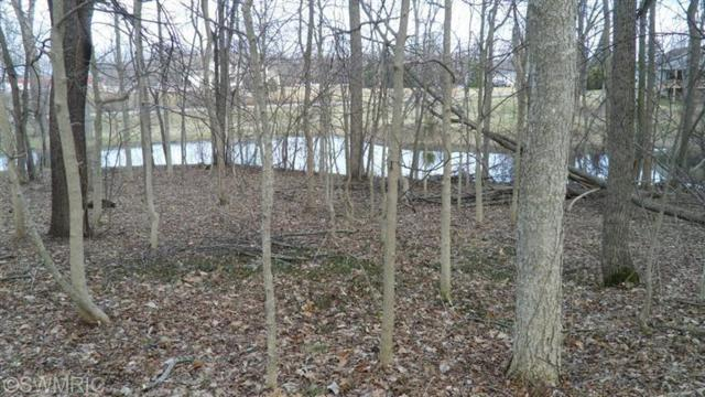Hawley Center Drive, Coldwater, MI 49036 (MLS #17019683) :: JH Realty Partners