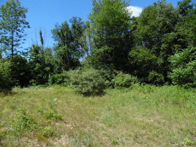 55644 Penn Road, Cassopolis, MI 49031 (MLS #17033476) :: Carlson Realtors & Development