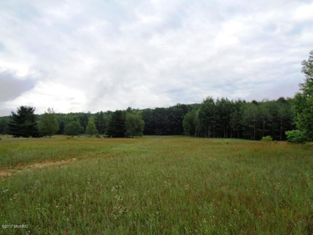 6984 Old State Road, Stanwood, MI 49346 (MLS #17034223) :: 42 North Realty Group