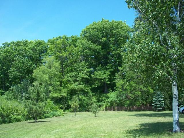 305 Highland Street, Jonesville, MI 49250 (MLS #17035376) :: Deb Stevenson Group - Greenridge Realty