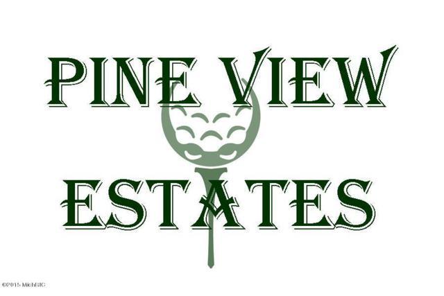 Pineview Estates Johnson Lot 32, Three Rivers, MI 49093 (MLS #17044022) :: JH Realty Partners