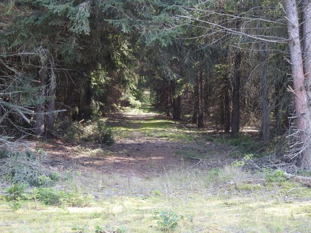 2 Acres Parcel B N 52nd Avenue, Mears, MI 49436 (MLS #17045426) :: Deb Stevenson Group - Greenridge Realty
