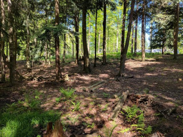 V/L Glenwood Road Lot #5, Ludington, MI 49431 (MLS #17046118) :: Deb Stevenson Group - Greenridge Realty