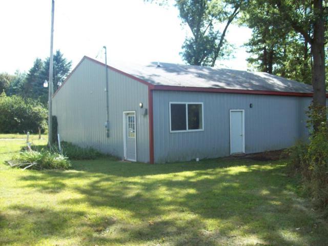 3660 Hastings Lake Road, Jonesville, MI 49250 (MLS #17046293) :: Deb Stevenson Group - Greenridge Realty