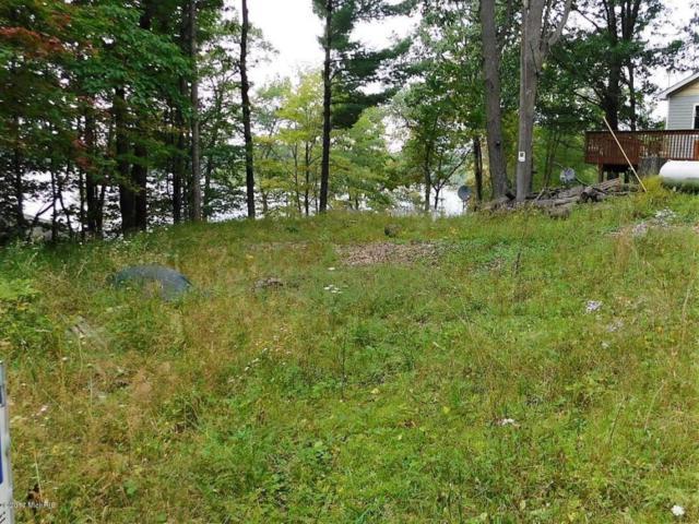 8&9 blk 13 N Poplar, Free Soil, MI 49411 (MLS #17047399) :: Deb Stevenson Group - Greenridge Realty