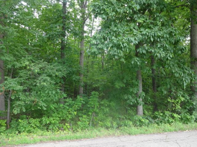 S S Drive N, Olivet, MI 49076 (MLS #17047584) :: Deb Stevenson Group - Greenridge Realty