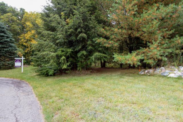 16795 Stoney Creek, Augusta, MI 49012 (MLS #17047951) :: Matt Mulder Home Selling Team