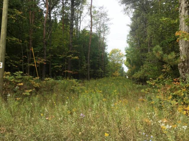 00 Lakola Lot 1, Reed City, MI 49677 (MLS #17047971) :: 42 North Realty Group