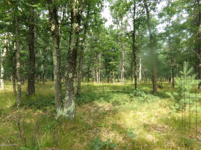 00 Wolf Trail, Free Soil, MI 49411 (MLS #17048009) :: Deb Stevenson Group - Greenridge Realty