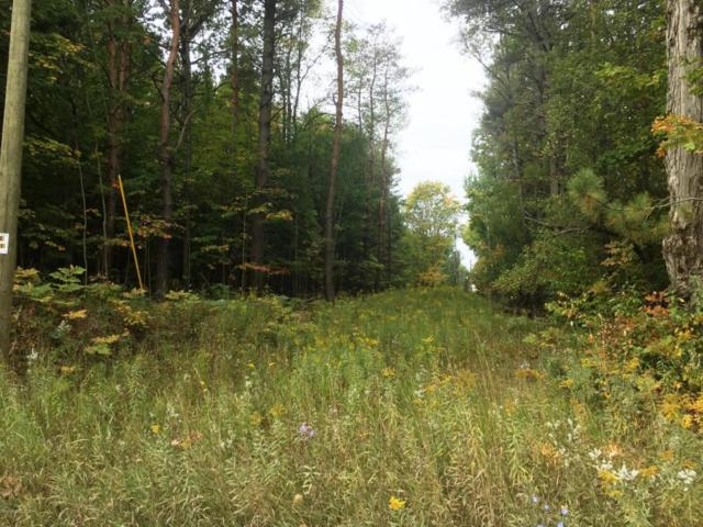 00 Lakola Road Lot 3, Reed City, MI 49677 (MLS #17048018) :: 42 North Realty Group