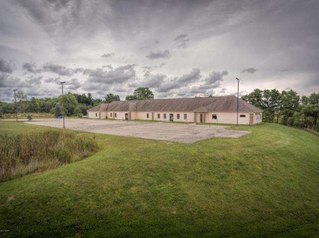 4150 225th Ave, Reed City, MI 49677 (MLS #17048020) :: Deb Stevenson Group - Greenridge Realty