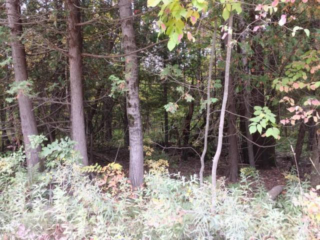 00 Lakola Road Lot 5, Reed City, MI 49677 (MLS #17048023) :: 42 North Realty Group