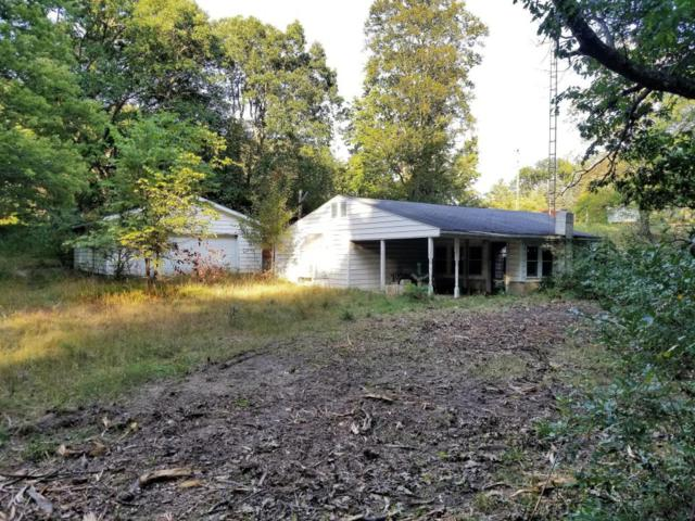 723 W Deer Run, Free Soil, MI 49411 (MLS #17048453) :: Deb Stevenson Group - Greenridge Realty