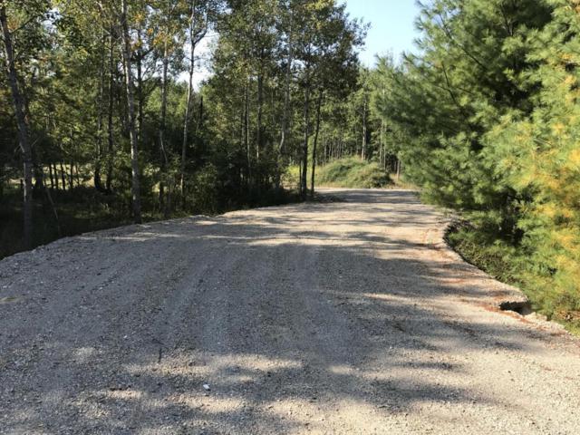 6901 W Decker Road, Ludington, MI 49431 (MLS #17048678) :: Deb Stevenson Group - Greenridge Realty