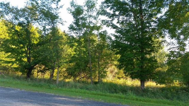 W Sugar Grove Road, Scottville, MI 49454 (MLS #17048889) :: Deb Stevenson Group - Greenridge Realty