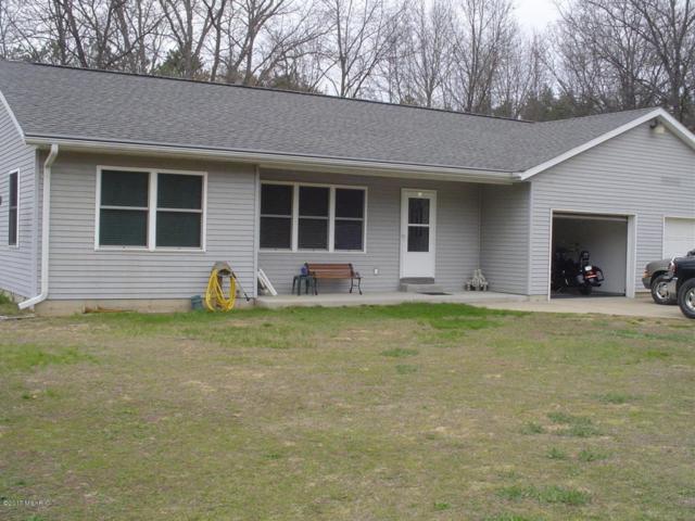 30472 66th Street, Lawton, MI 49065 (MLS #17049616) :: Matt Mulder Home Selling Team