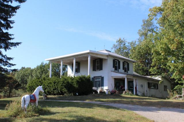 4890 W Hesslund Road, Ludington, MI 49431 (MLS #17049624) :: Deb Stevenson Group - Greenridge Realty
