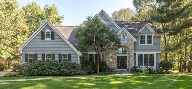 6420 E East Bay Lane, Richland, MI 49083 (MLS #17050087) :: Matt Mulder Home Selling Team