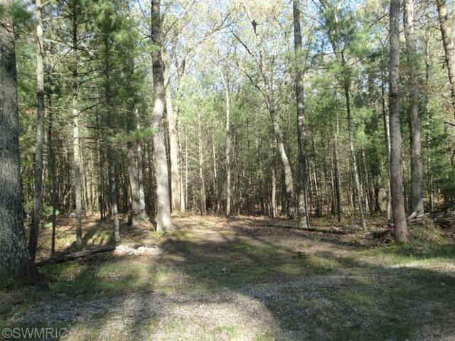 Lot 34C N Mohawk, Pentwater, MI 49449 (MLS #17051669) :: Deb Stevenson Group - Greenridge Realty
