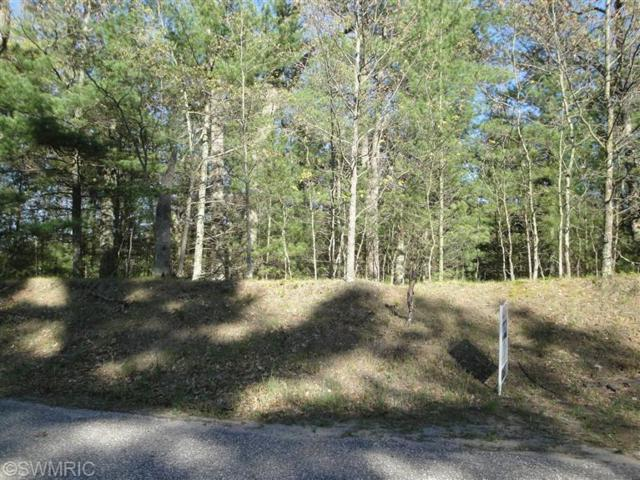Lot 49 Ottawa, Pentwater, MI 49449 (MLS #17051672) :: Deb Stevenson Group - Greenridge Realty