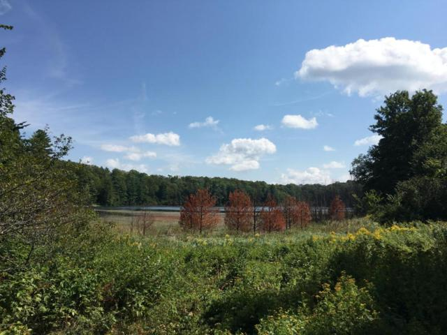 Camp 10 Rd, Gaylord, MI 49735 (MLS #17051723) :: 42 North Realty Group