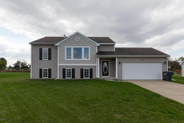 913 Christian Avenue, Vicksburg, MI 49097 (MLS #17051801) :: Matt Mulder Home Selling Team