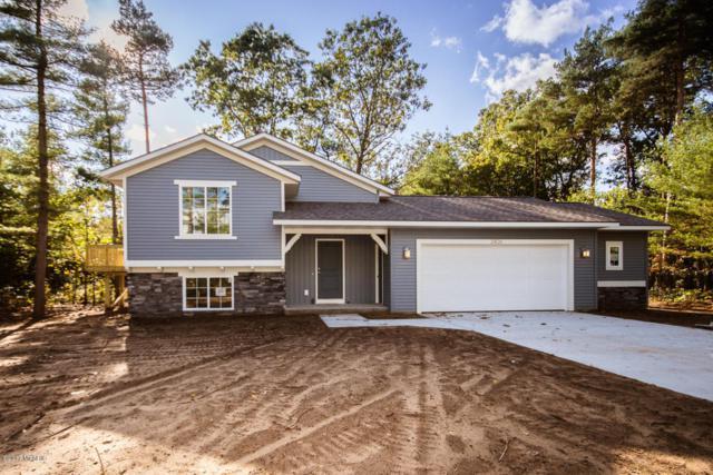 3426 Dana Drive, Hamilton, MI 49419 (MLS #17052110) :: Deb Stevenson Group - Greenridge Realty