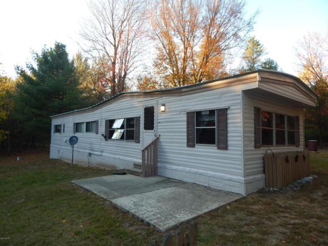 8080 E 5 Mile Road, Luther, MI 49656 (MLS #17052649) :: Carlson Realtors & Development