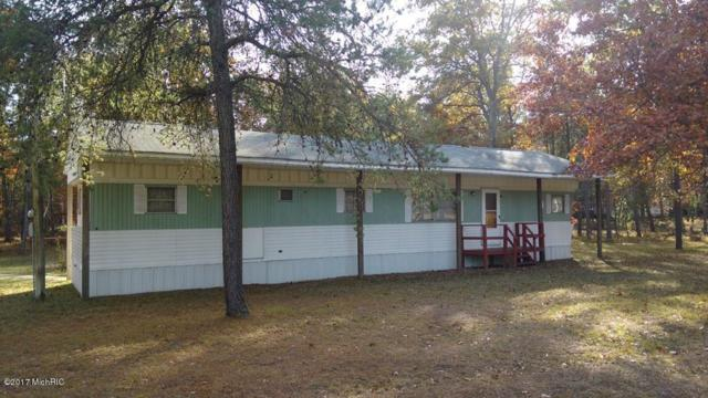 973 E Old M-63, Luther, MI 49656 (MLS #17052778) :: 42 North Realty Group
