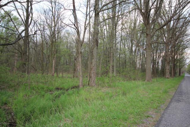 10 Acres E V Avenue, Vicksburg, MI 49097 (MLS #17053343) :: Carlson Realtors & Development