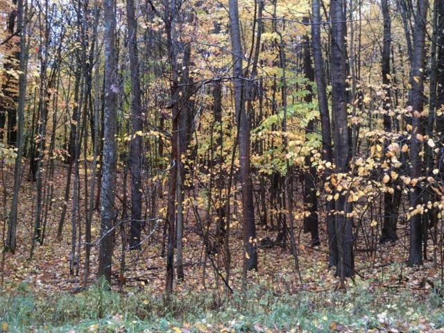 1 9 Mile, White Cloud, MI 49349 (MLS #17054239) :: 42 North Realty Group