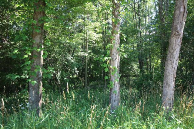 10.2 acres E Uv Avenue, Vicksburg, MI 49097 (MLS #17054245) :: Carlson Realtors & Development