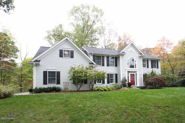 90 S Lake Doster Drive, Plainwell, MI 49080 (MLS #17054635) :: Matt Mulder Home Selling Team