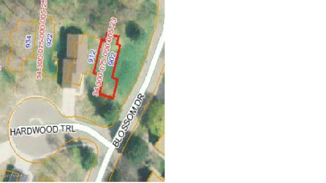 902 Hardwood Trail, Portland, MI 48875 (MLS #17054677) :: JH Realty Partners