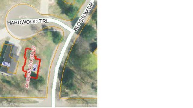 903 Hardwood Trail #27, Portland, MI 48875 (MLS #17054683) :: JH Realty Partners