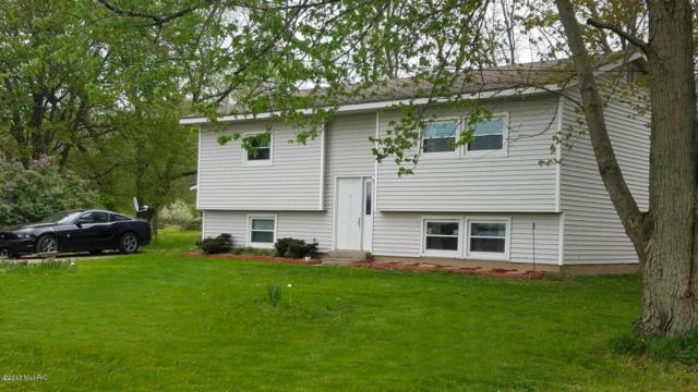 603 1/2 Marsh Road, Plainwell, MI 49080 (MLS #17054868) :: Matt Mulder Home Selling Team