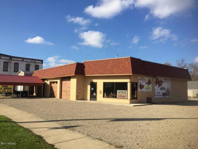 117 E Main Street, Centreville, MI 49032 (MLS #17055378) :: Deb Stevenson Group - Greenridge Realty