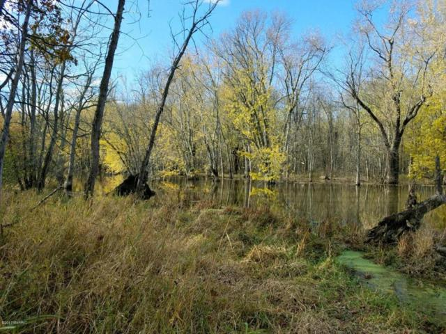 LOT 6 W Island Road, Fowler, MI 48835 (MLS #17056267) :: JH Realty Partners