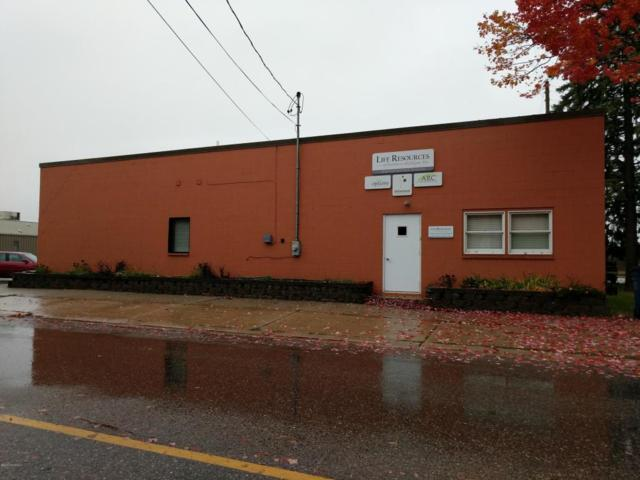 419 N Lake Street, Cadillac, MI 49601 (MLS #17057536) :: Carlson Realtors & Development