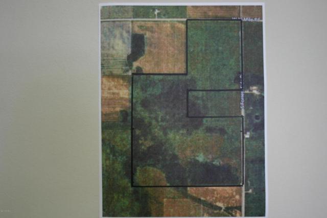 180-TBD1 S Forrest Road, Dafter, MI 49724 (MLS #17058480) :: Carlson Realtors & Development
