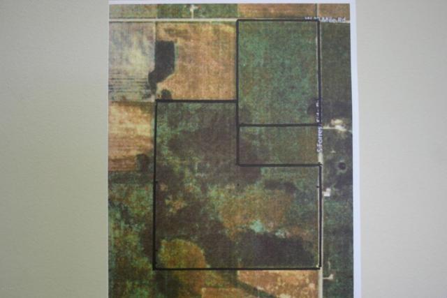 TBD2 S Forrest Road, Dafter, MI 49724 (MLS #17058481) :: Carlson Realtors & Development