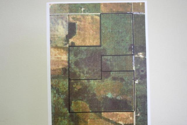 TBD3 S Forrest Road, Dafter, MI 49724 (MLS #17058483) :: Carlson Realtors & Development