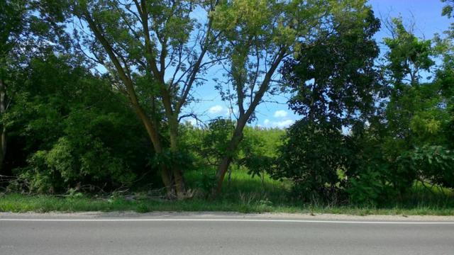 Vacant County Farm Road, Greenville, MI 48838 (MLS #17060190) :: JH Realty Partners
