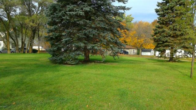 Vacant S Bower Street Lots 13, 14, 15, Greenville, MI 48838 (MLS #17060193) :: JH Realty Partners