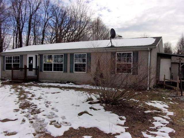 10977 N 1st Street, Otsego, MI 49078 (MLS #18001265) :: Matt Mulder Home Selling Team