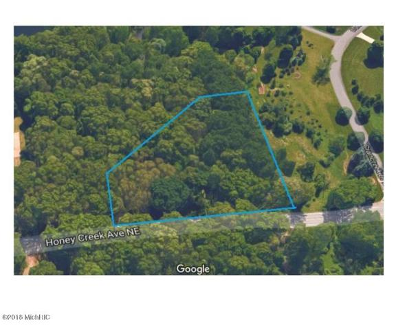 200 Honey Creek Avenue NE, Ada, MI 49301 (MLS #18001611) :: 42 North Realty Group
