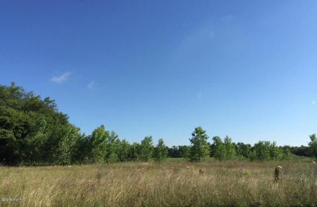 3658 New Farm Street, Kalamazoo, MI 49048 (MLS #18001977) :: Carlson Realtors & Development