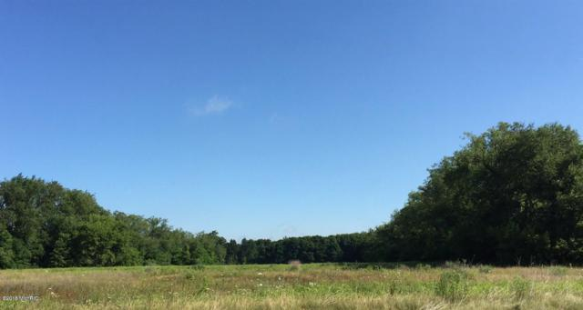 3676 New Farm Street, Kalamazoo, MI 49048 (MLS #18001980) :: Carlson Realtors & Development