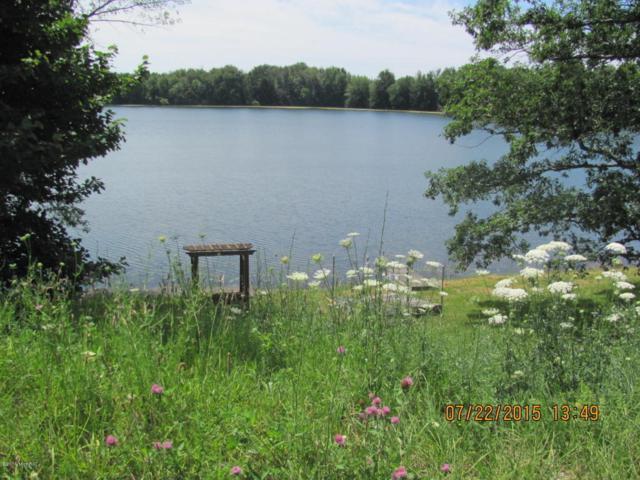 675 W Sippy, Scottville, MI 49454 (MLS #18003405) :: Deb Stevenson Group - Greenridge Realty