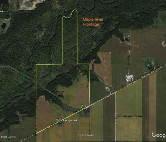 9981 E Wager Road, Pewamo, MI 48873 (MLS #18004416) :: JH Realty Partners